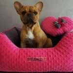Cuccia_Luxury_Pink_02